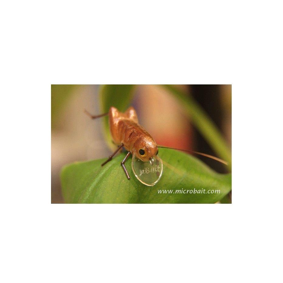 Leurre Microbait Grasshopper 26mm