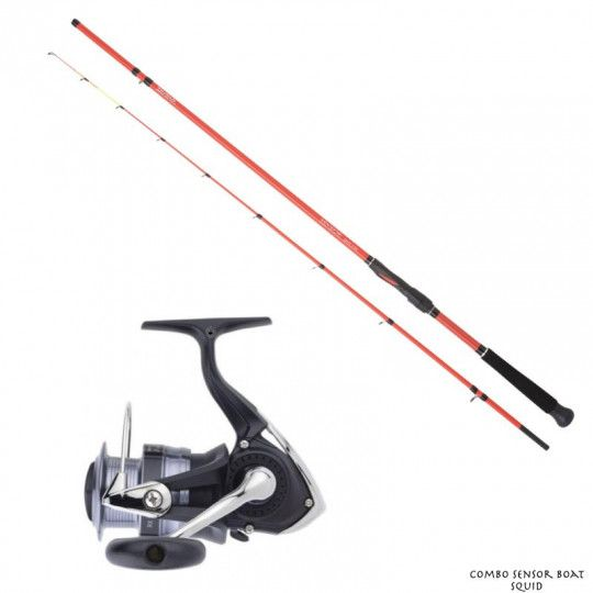Pack Canne Moulinet Daiwa...