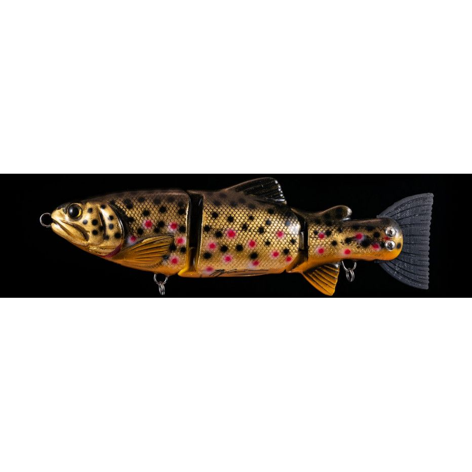 Poisson Nageur Lucky Lures Lucky Trout