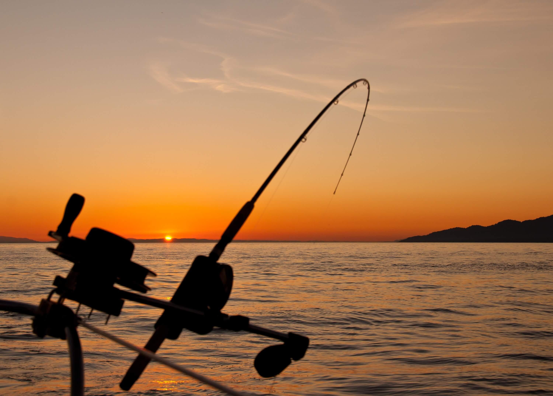 canne à pêche couché de soleil