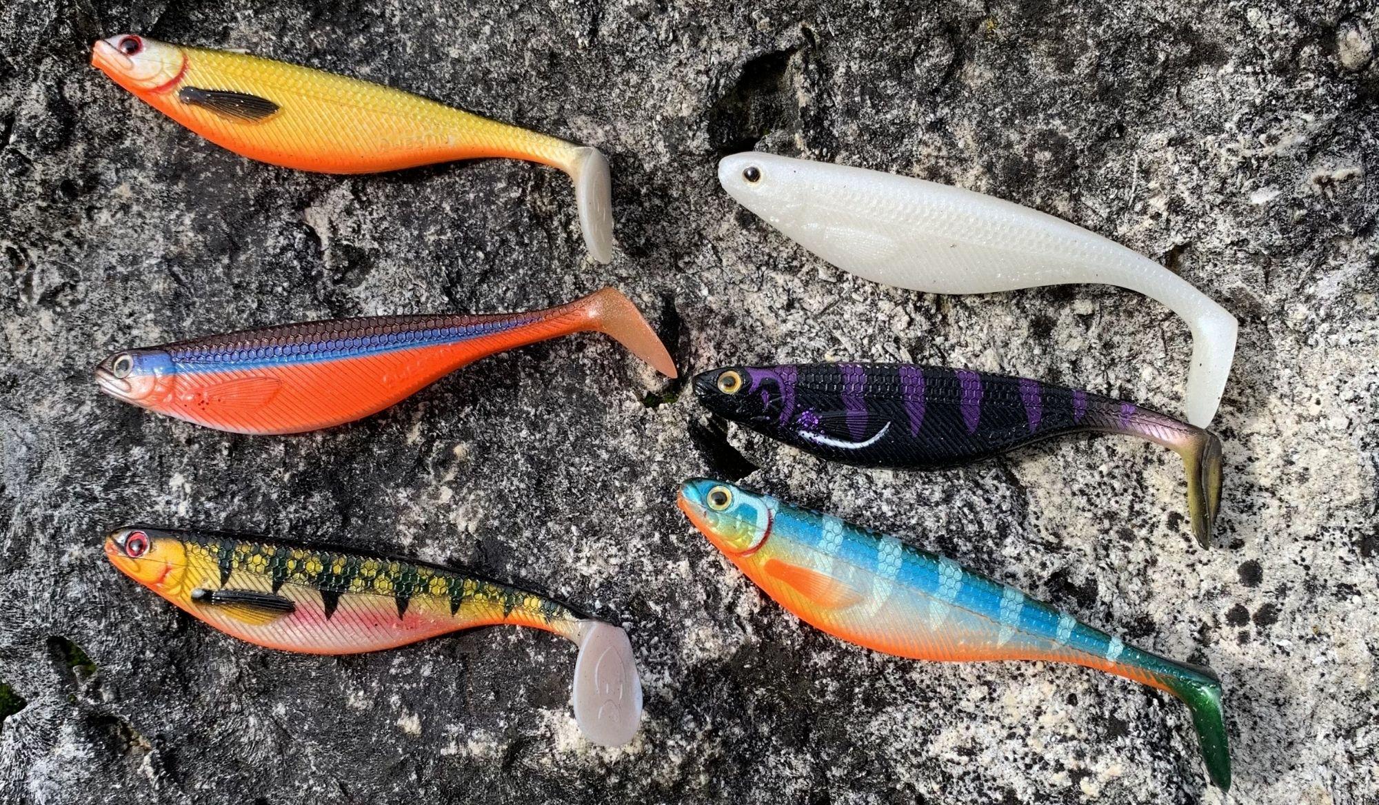 leurre souple pour la pratique de la pêche au bar